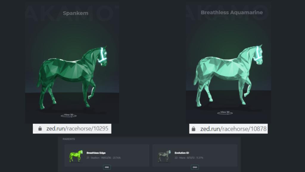 zed run zedrun gazette nft horses horseracing strategy